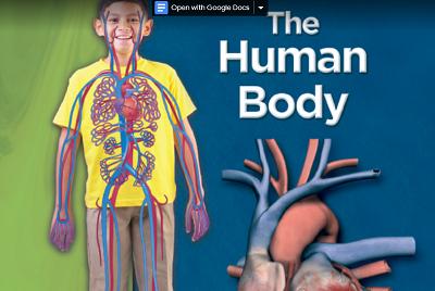 جسم الانسان موسوعه علمية للاطفال