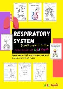تعليم الجهاز التنفسي للاطفال